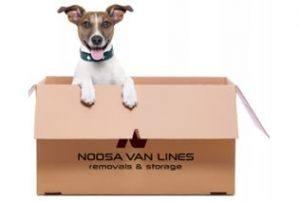 Noosa Van Lines